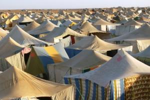 CampamentoSaharaui